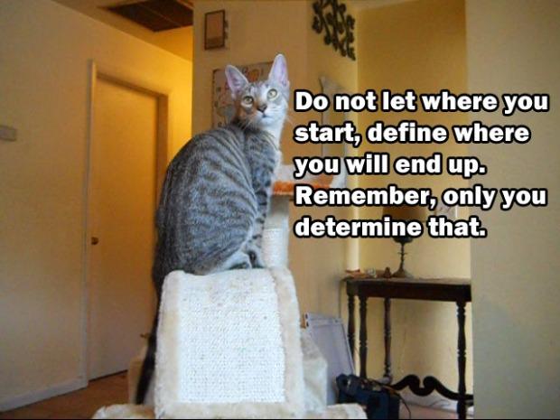 Determine Your Destiny
