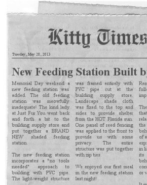 Extra extra, Read all about it!